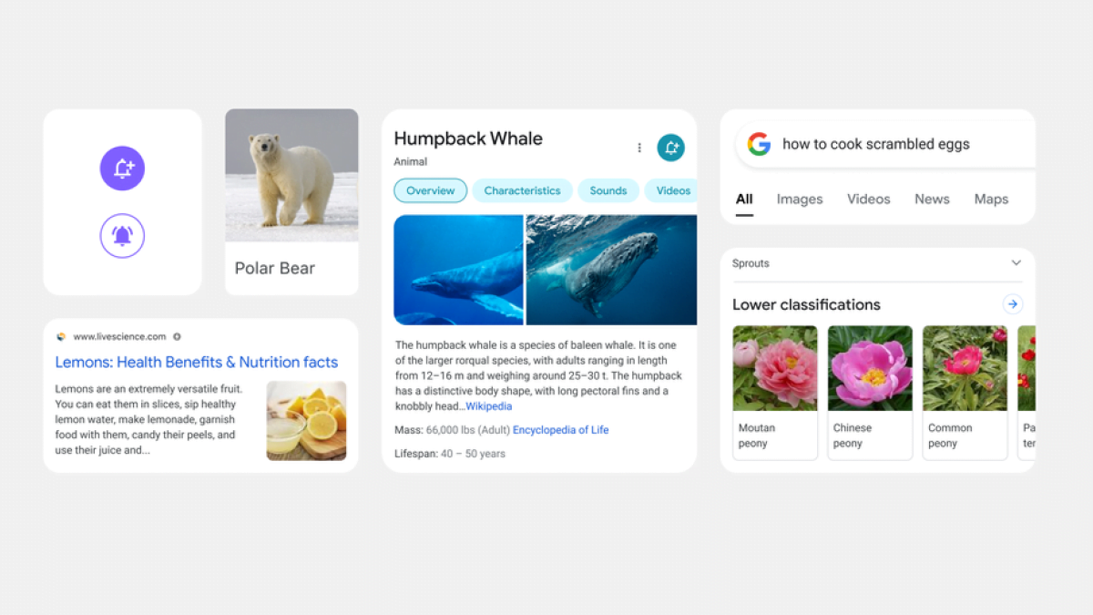 Google mobile search redesign