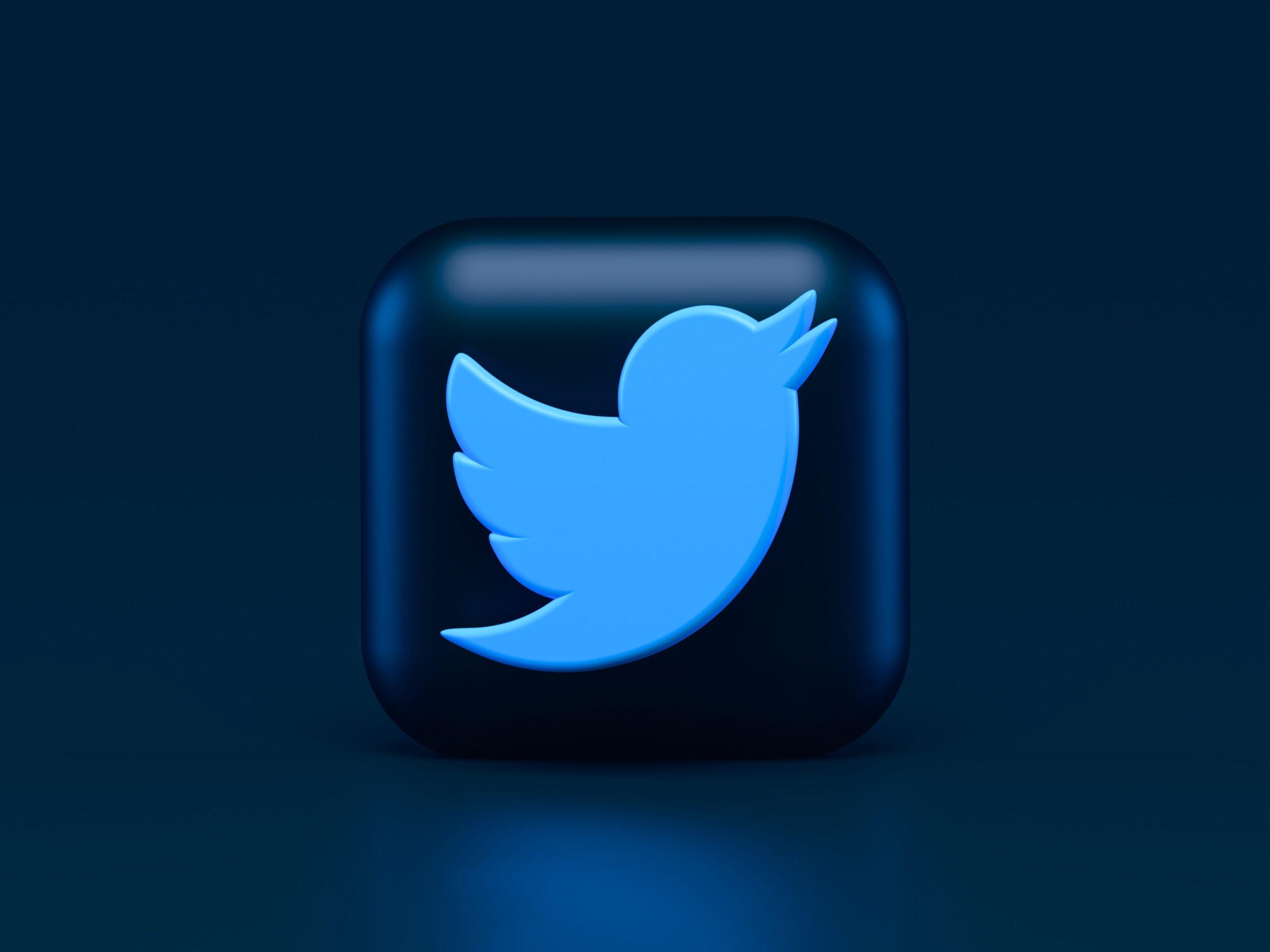 Twitter 3D Logo scaled
